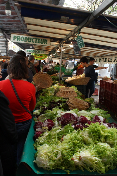 Lettuces from Ile de France